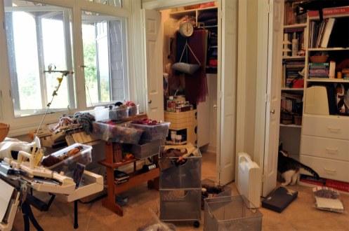 Studio - Cleaning Closet_edited-1